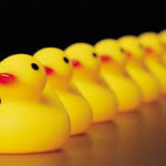 Post image for Why getting your ducks in a row is not good business strategy